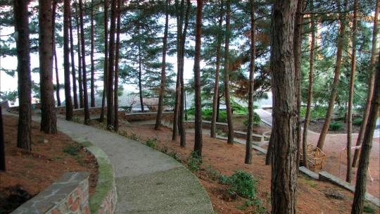 Парк «Парадиз» - фото 3