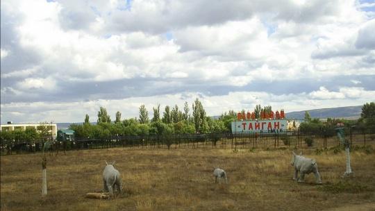 """""""Тайган"""" - Парк львов  - фото 3"""