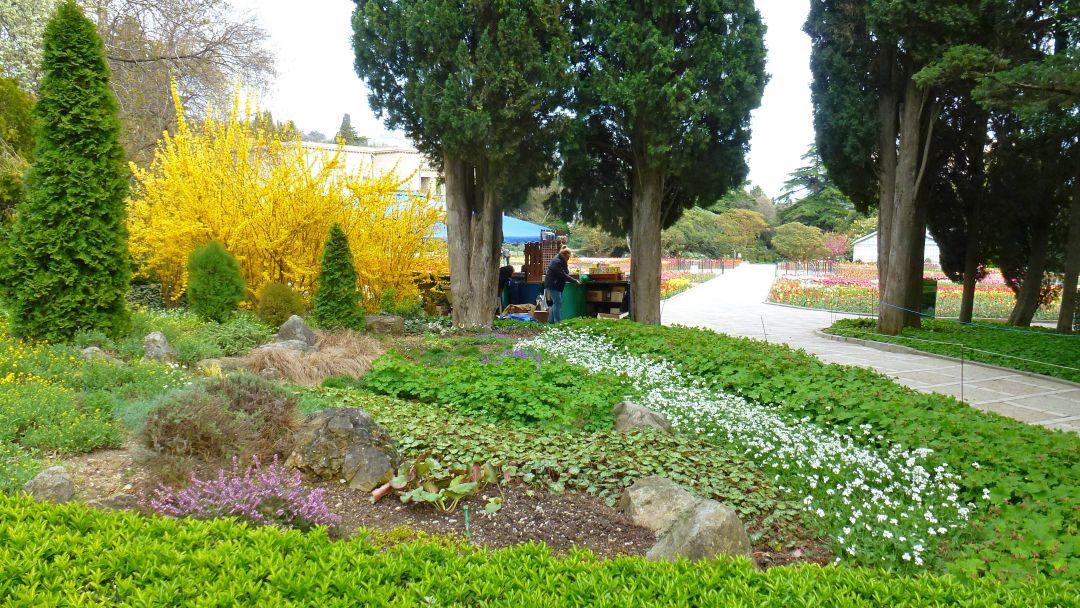 Никитский ботанический сад и Ялтинские красоты - фото 6
