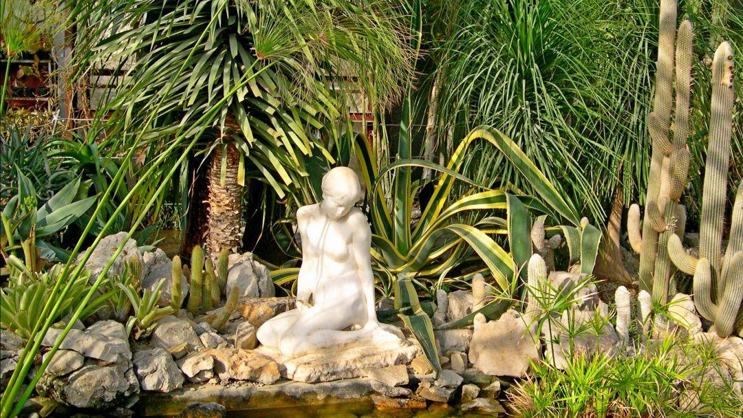 Никитский ботанический сад - фото 3