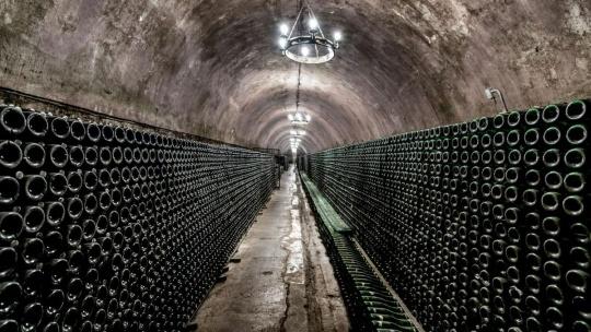 Абрау-Дюрсо. Российский дом шампанских вин - фото 2
