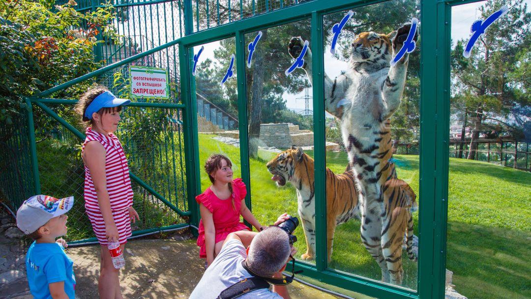 Геленджик и Сафари парк - фото 2