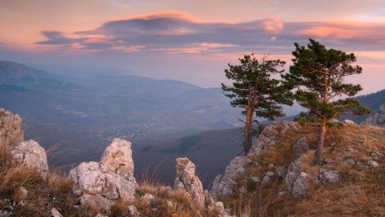 Экскурсия Романовская дорога: царская охота в Ялте