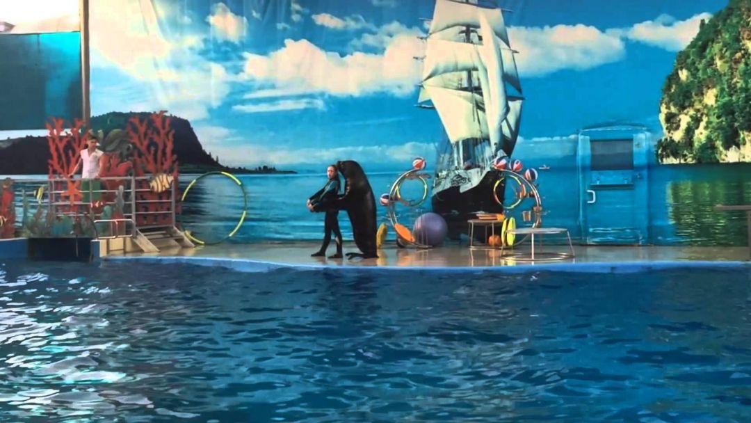 """Морской комплекс """"Немо"""". Анапа - фото 5"""