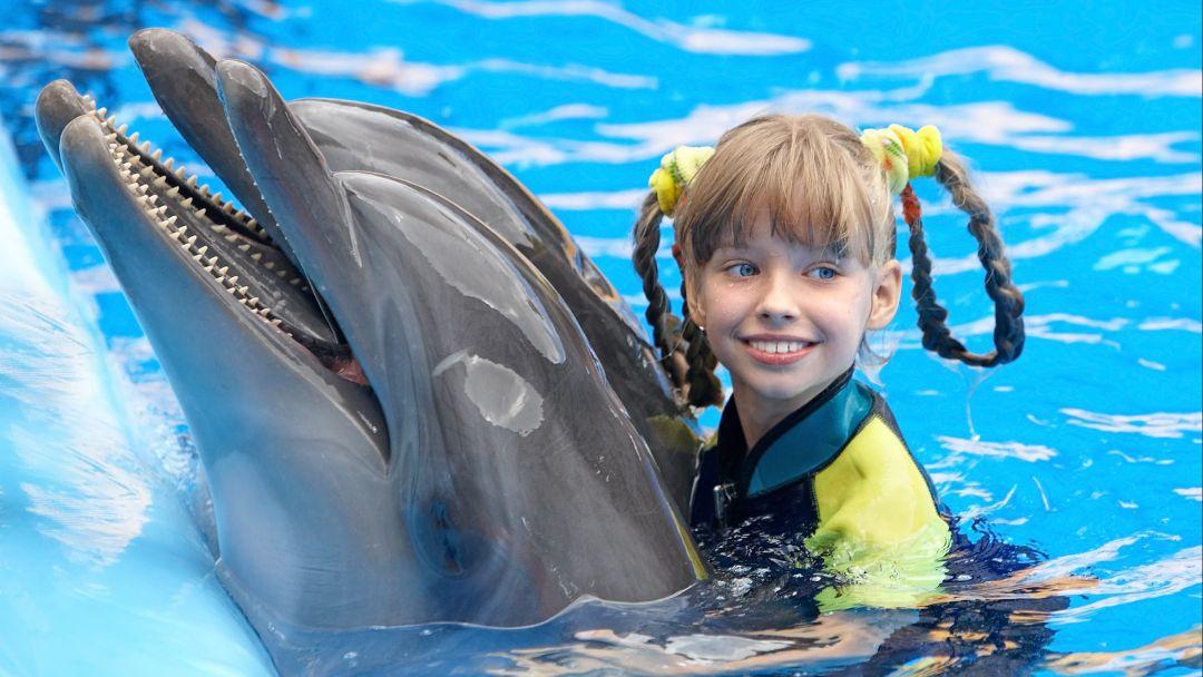Плавание с дельфинами в Акватории - фото 1