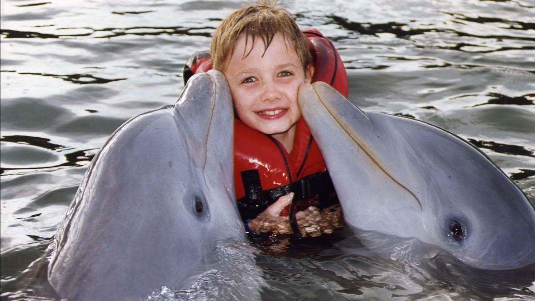 Плавание с дельфинами в Акватории - фото 2