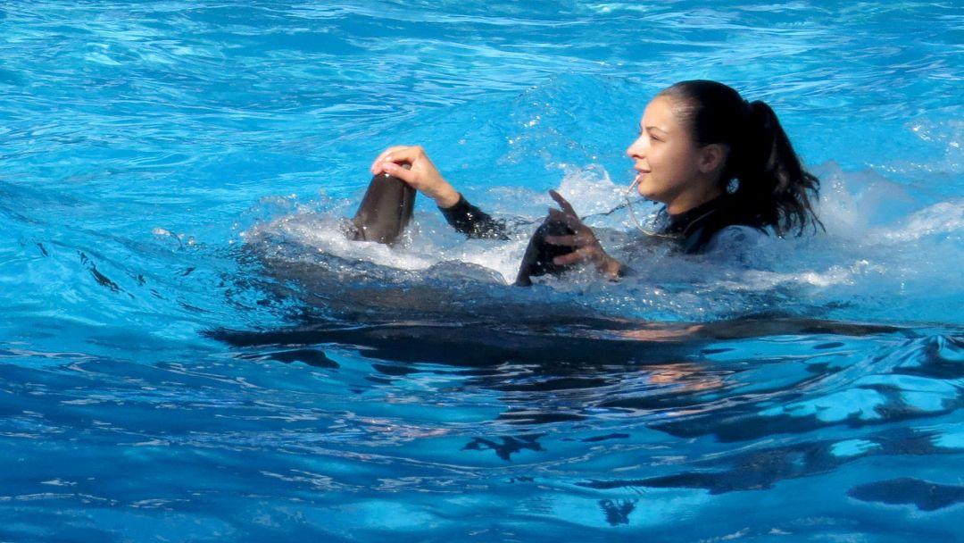 Плавание с дельфинами в Акватории - фото 3