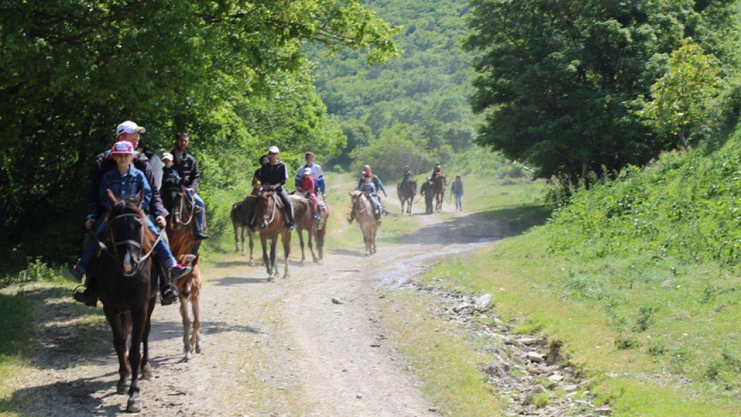 Экскурсия Конные прогулки: малый круг