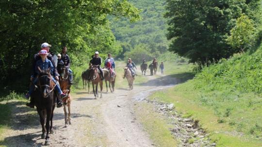 Экскурсия Конные прогулки: малый круг в Анапе