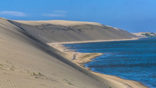 Куршская коса - дорога в дюны - фото 2