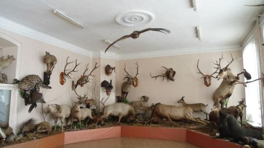 Экскурсия Музей Природы