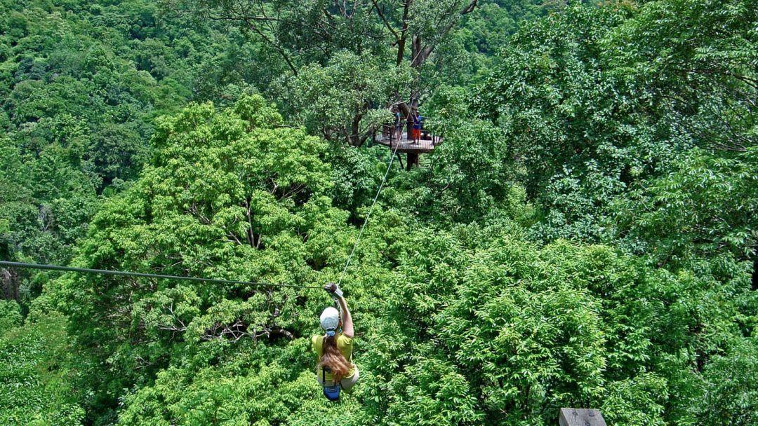 По канатам над джунглями - фото 3