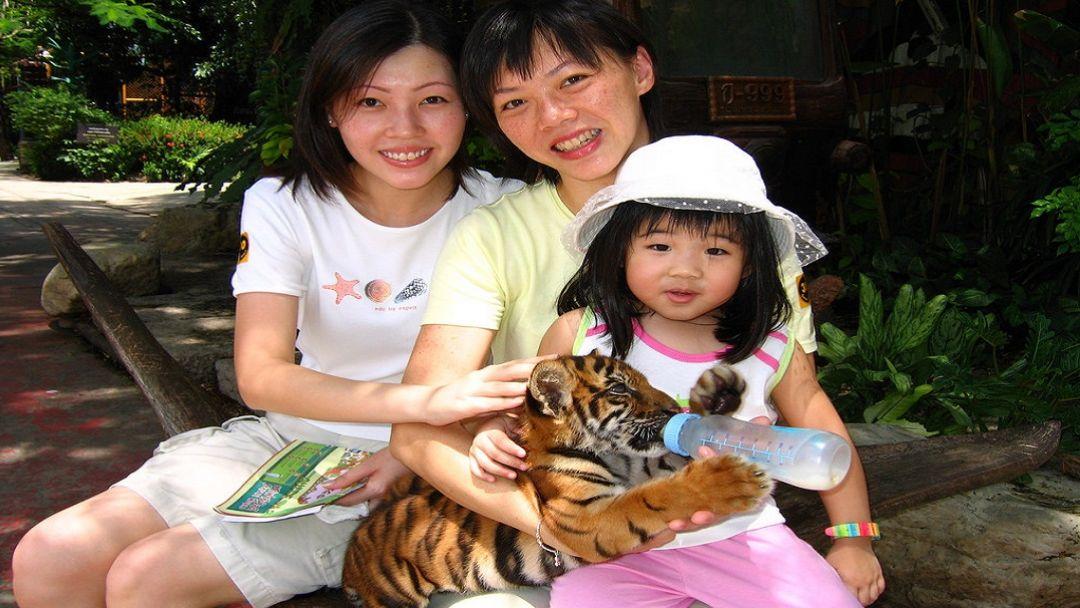 """Парк """"Safari World"""" - Мир Сафари - фото 7"""