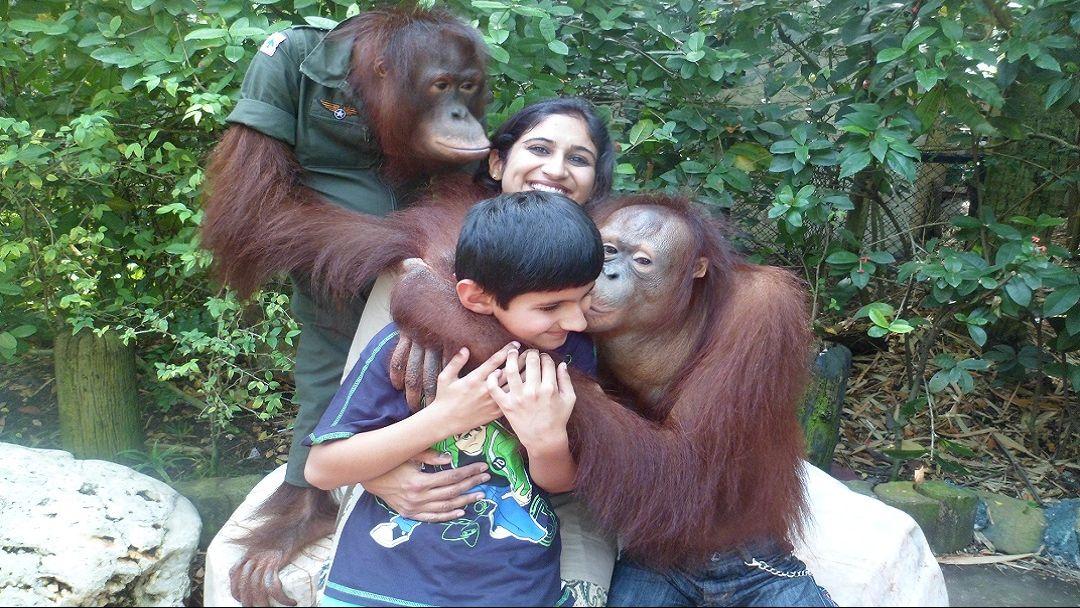 "Парк ""Safari World"" - Мир Сафари в Бангкоке"