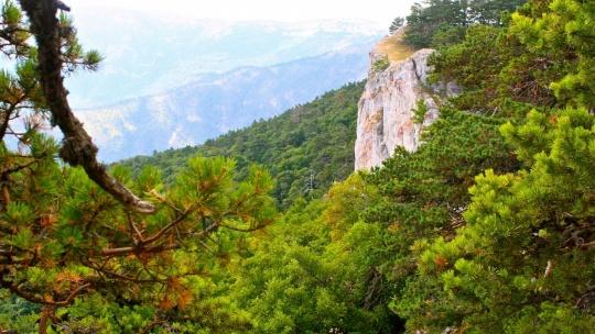 Крымский природный заповедник в Симеизе