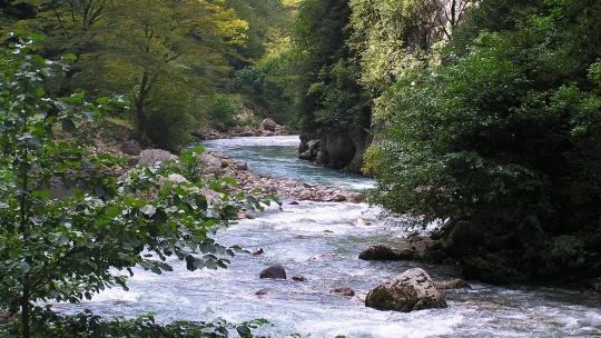 Река Гега в Сочи