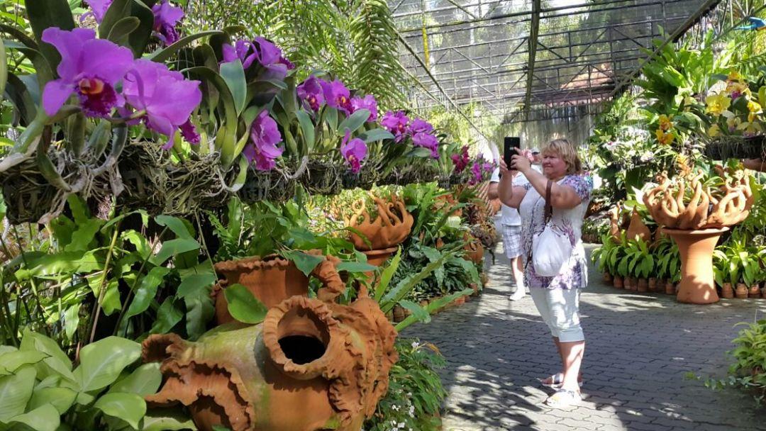 """Тропический Сад """"Нонг Нуч"""" - фото 5"""