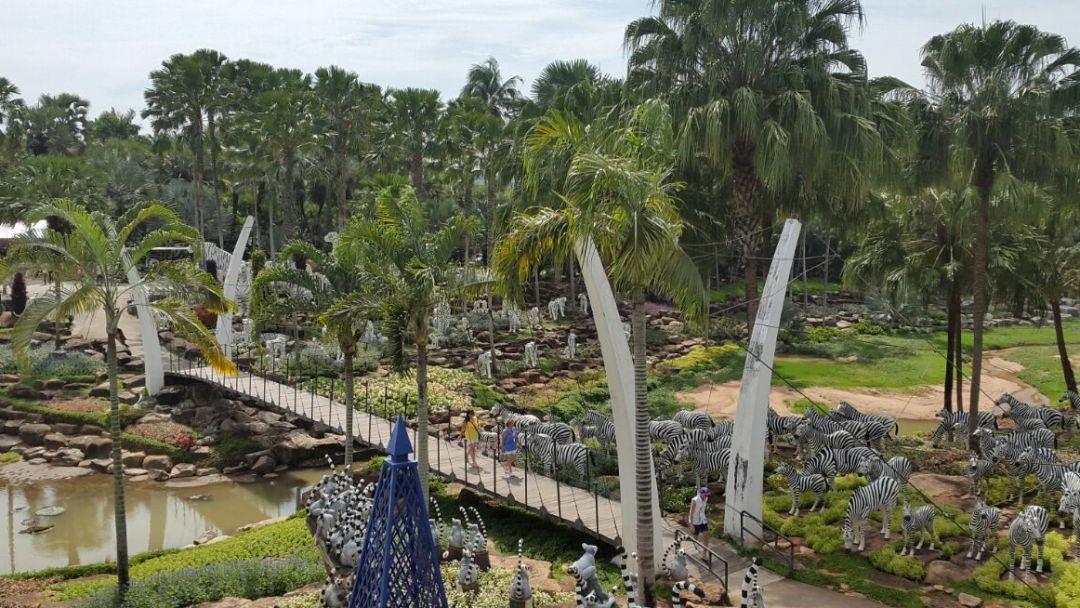 """Тропический Сад """"Нонг Нуч"""" - фото 10"""