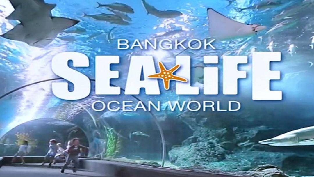 Океанариум SeaLife Ocean World в Бангкоке