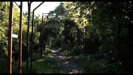 Ботанический сад БФУ имени И. Канта по Калининграду