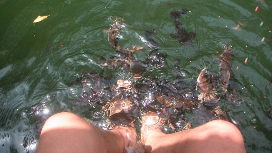 Экскурсия Тур по островам + донная рыбалка