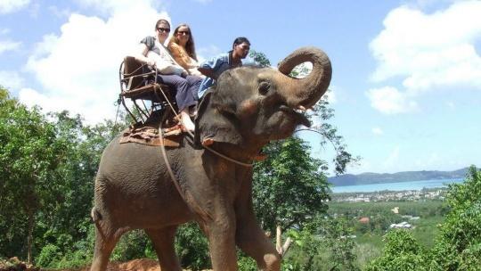 Экскурсия Сафари на слонах на Бали