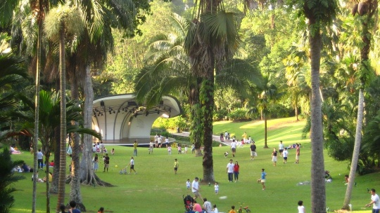 Сингапурский ботанический сад в Сингапуре