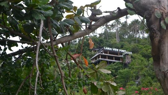 Смотровая площадка возле Чавенг Нои по Самуи