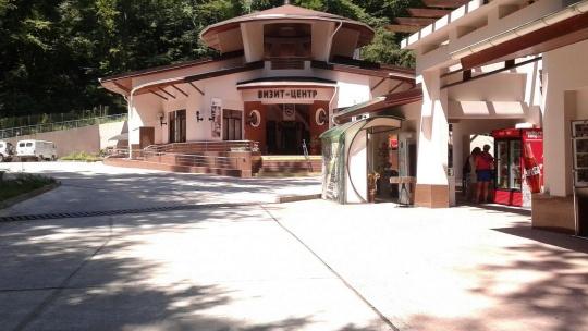Экскурсия Тисосамшитовая роща в Сочи