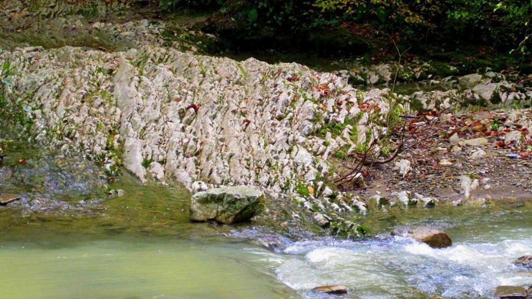 Экскурсия Ущелье реки Агура