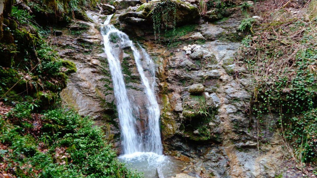 Экскурсия Ущелье реки Восточный Дагомыс