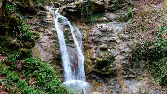 Экскурсия Ущелье реки Восточный Дагомыс в Сочи