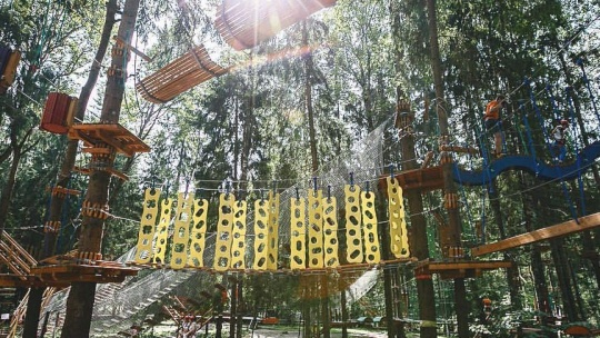 Экскурсия Веревочный парк: 4 трассы по Москве
