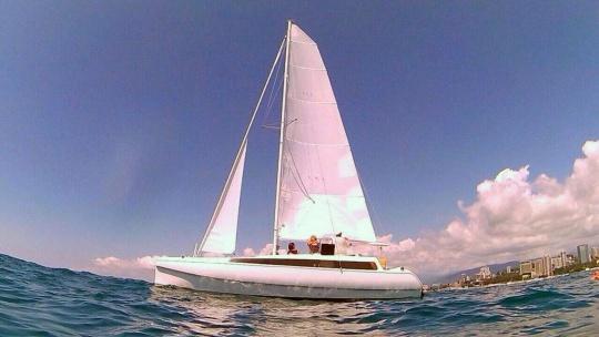 Экскурсия Катание на яхте SkyLine по Хосте