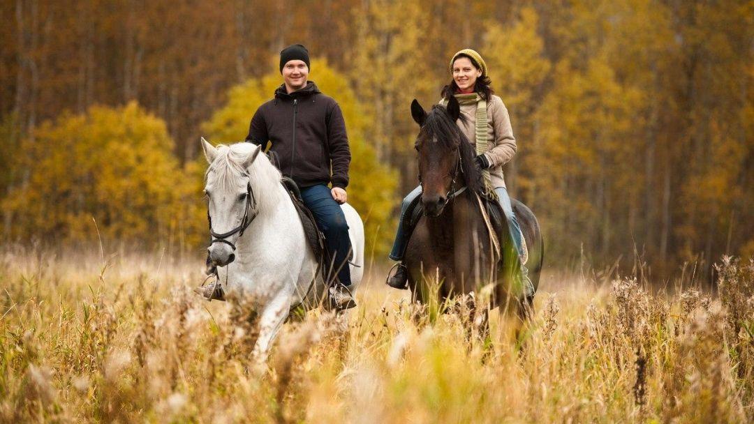 Верховая езда на лошади - фото 1