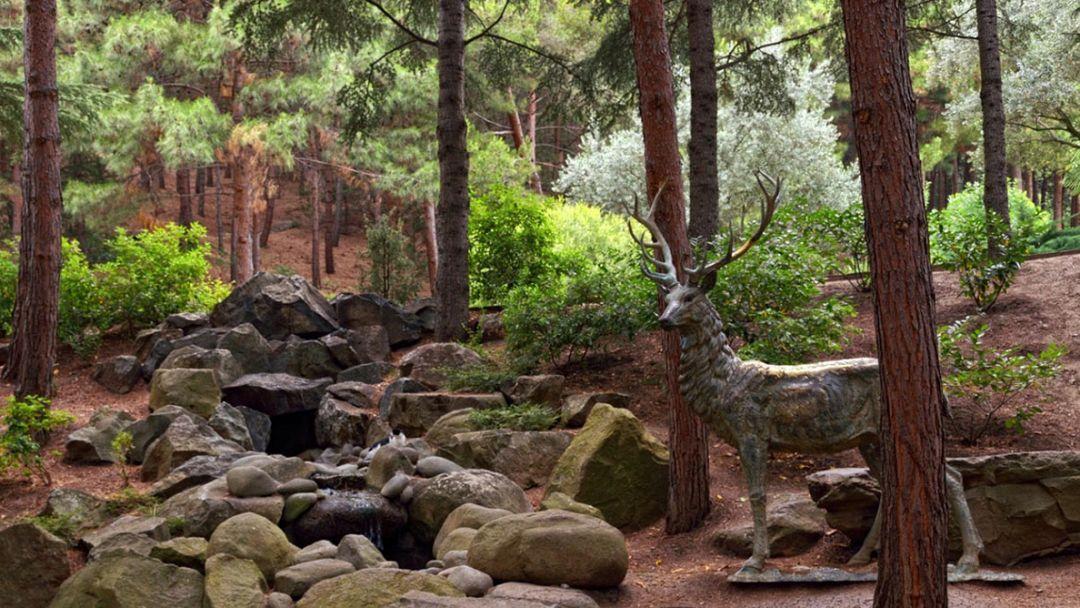 Парк Парадиз (Айвазовское) - фото 4