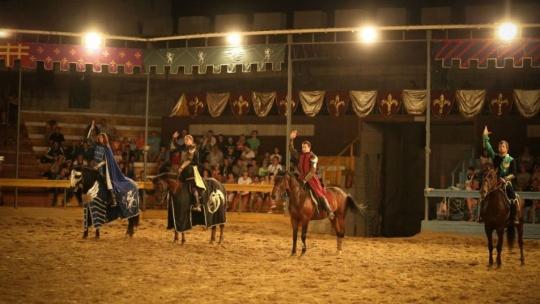 Рыцарский турнир в замке  - фото 2