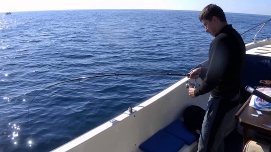 Рыбалка в Балаклаве - фото 2