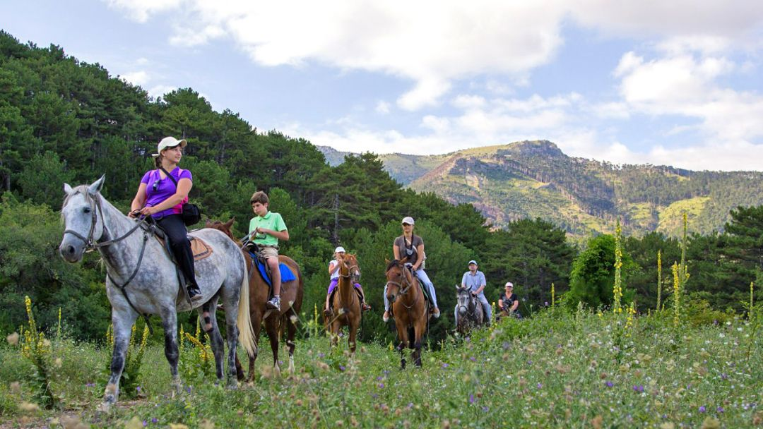 Конные прогулки у подножья горы Демерджи и знаменитой Долины Привидений - фото 1