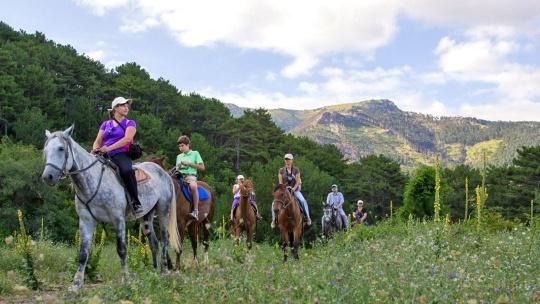 Экскурсия Конные прогулки в окрестностях Ялты в Ялте