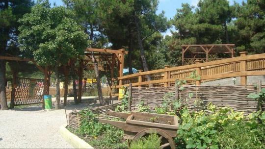 Сафари парк - фото 3