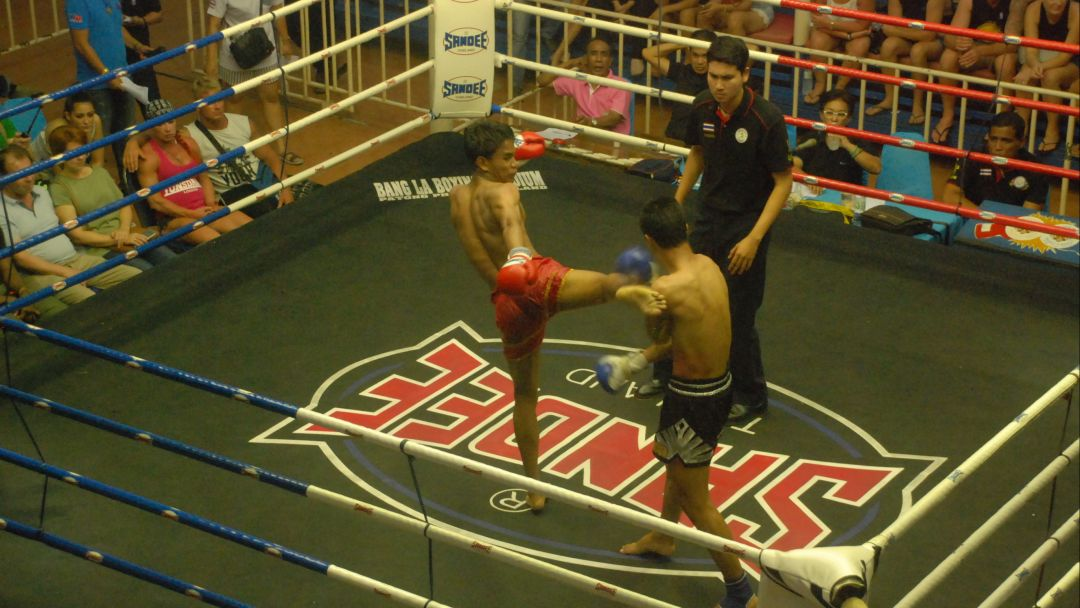 Тайский бокс - фото 3