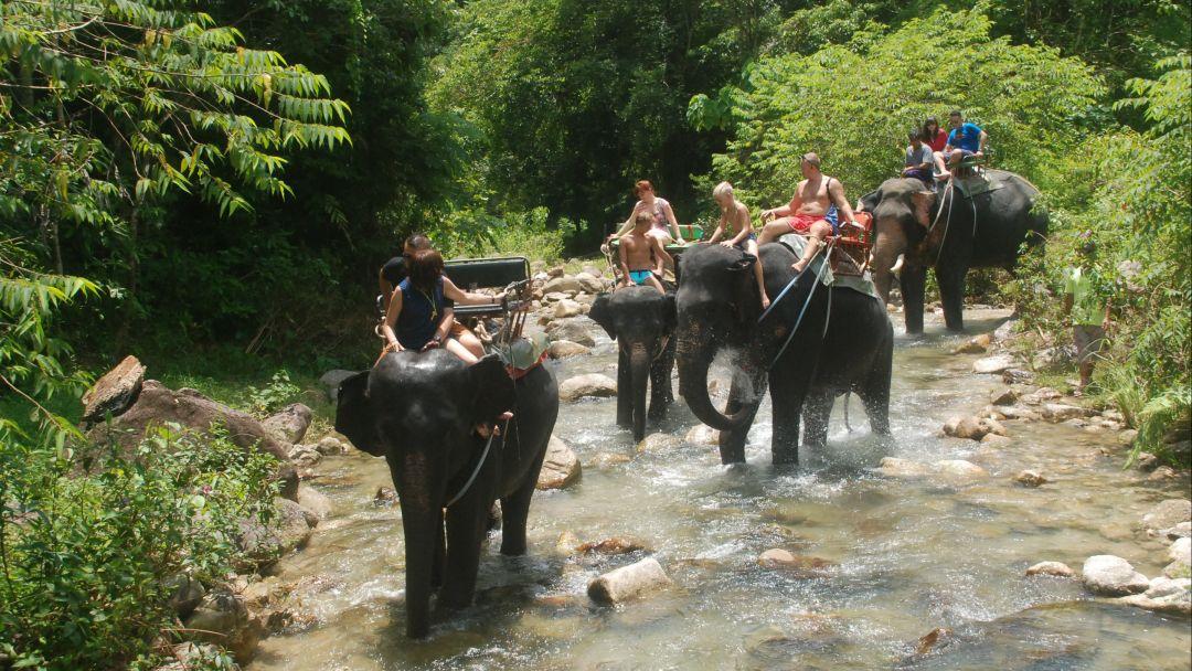 Рафтинг + Слоны + Квадроциклы - фото 4