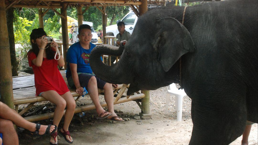 Рафтинг + Слоны + Квадроциклы - фото 7