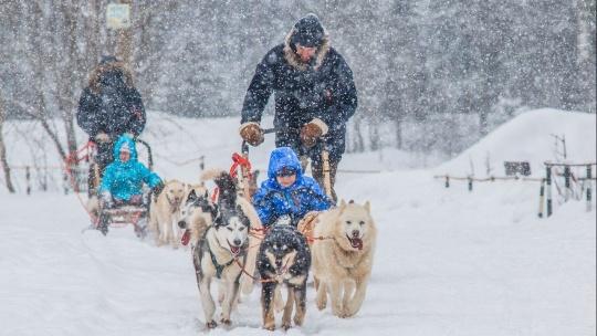 Зимняя программа «Русская Аляска» - фото 5