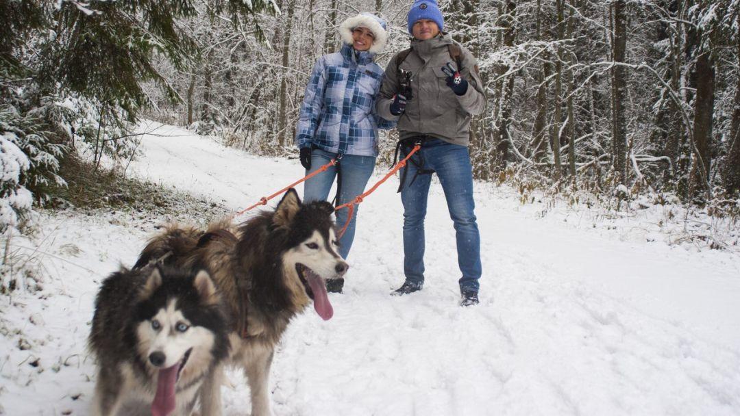 Дог-треккинг (поход с собаками)+ экскурсия по центру питомника - фото 5