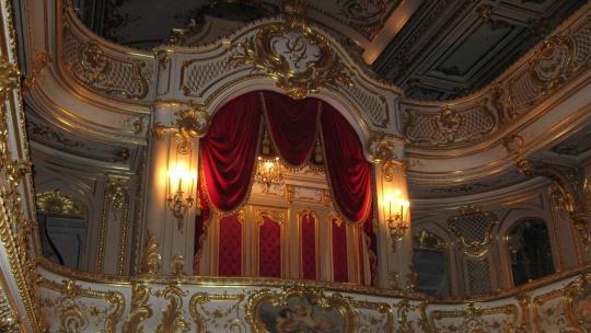 Юсуповский дворец, музей-квартира А.С.Пушкина и автобусная обзорная экскурсия - фото 3