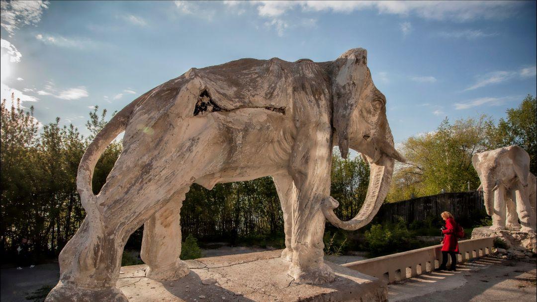 Экскурсия По следам самарских привидений с посещением дачи со слонами