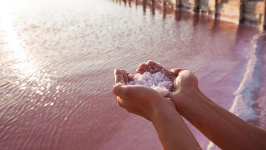 """Евпатория """"От розового озера до белоснежных пляжей"""" - фото 2"""