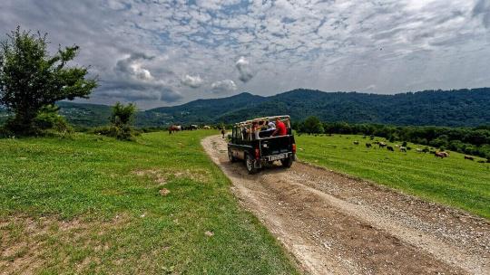 Экскурсия Джиппинг тур: Обзорный Сочи в Анапе